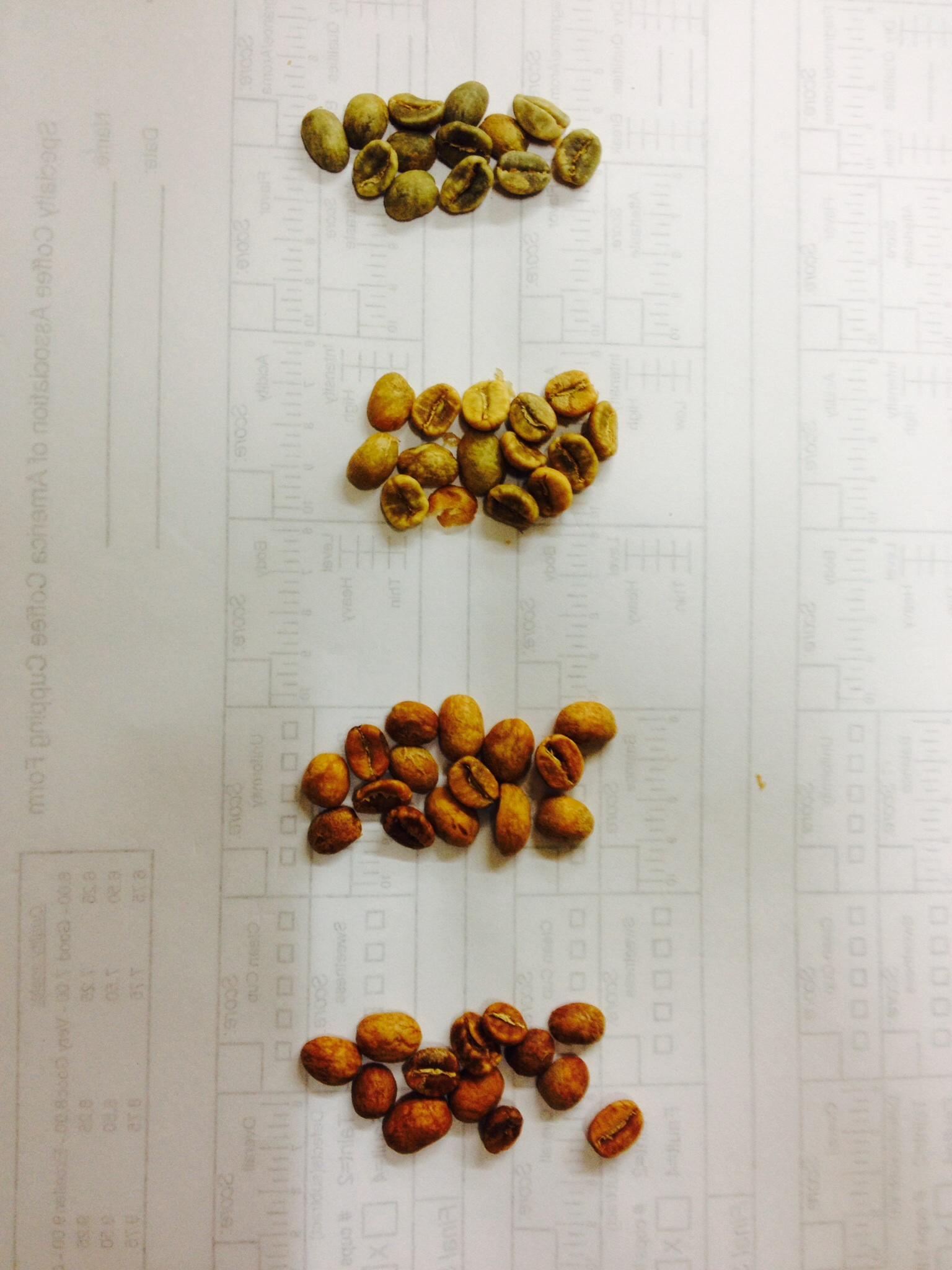 コーヒー豆/beans