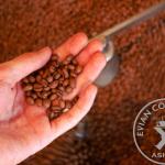 自分好みのコーヒー豆の選び方。